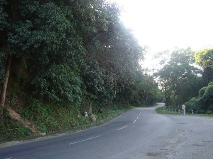 Road to Kaziranga National Park